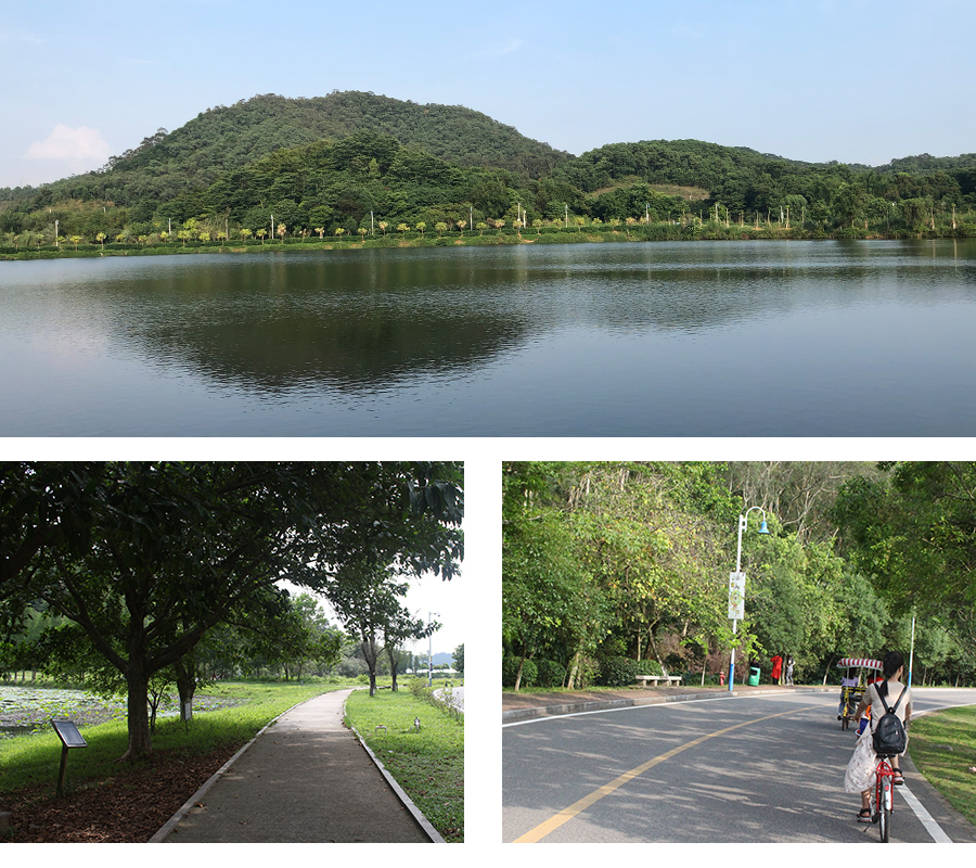 Hoone -News | Outdoor activity-Riding bicycle-1